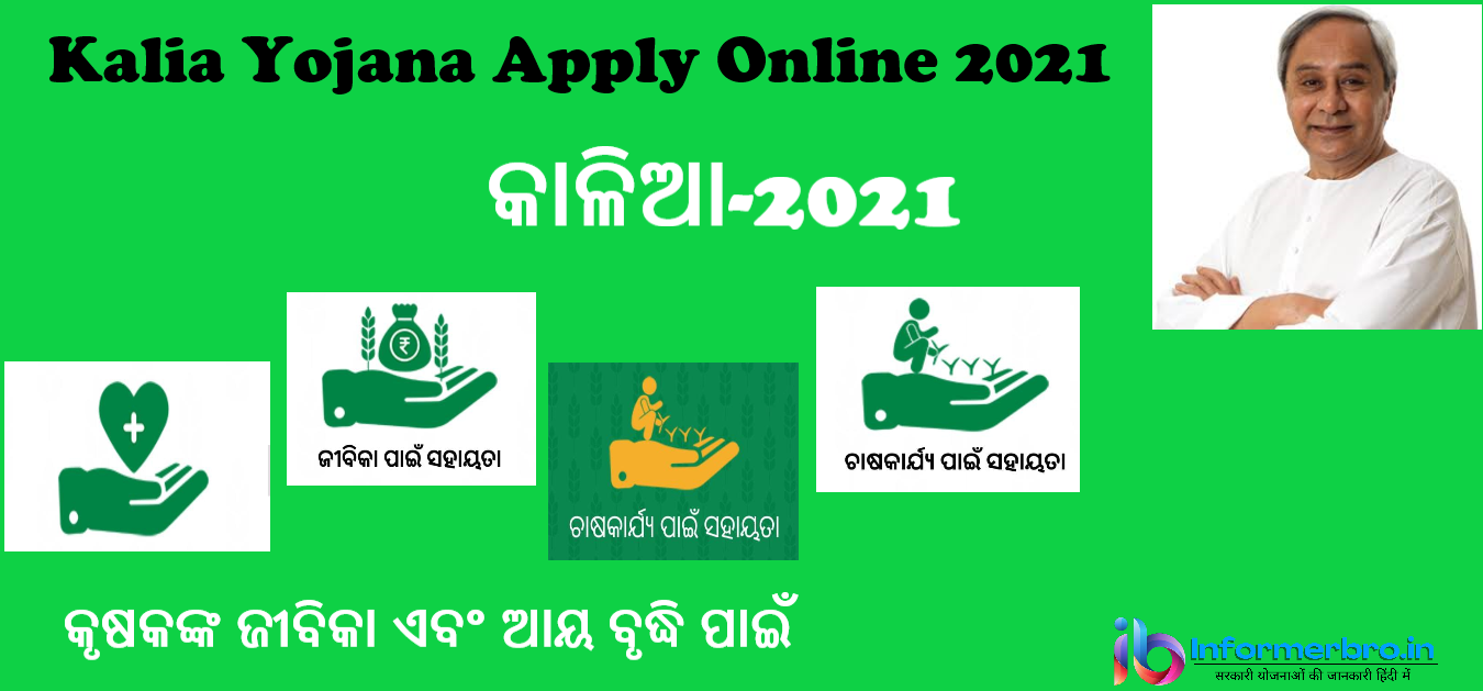 You are currently viewing Kalia Yojana Apply Online 2021:Application Form, Eligibility    How To Apply In Kalia Scheme