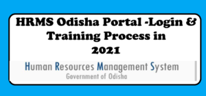 Read more about the article HRMS Odisha Portal 2021: Login & Training in hrmsodisha.gov.in